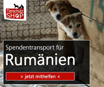 spendentransport_tierschutz-shop_smeura_336x280