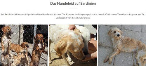 Hundeleiden auf Sardinien