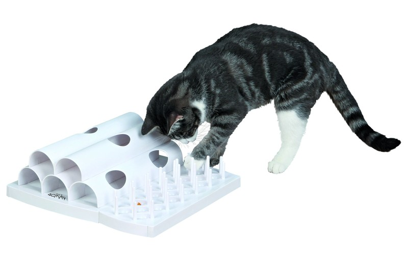 cat-activity-domino-basis-set-katzen-strategiespiel-1434017112