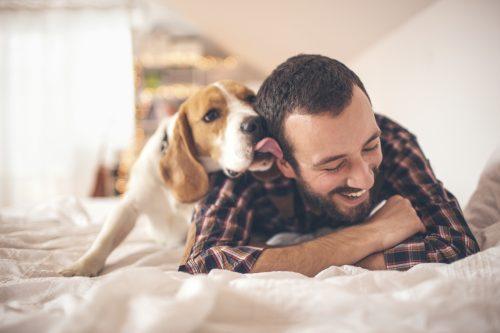 Mann Hund iStock_000048163856_Large