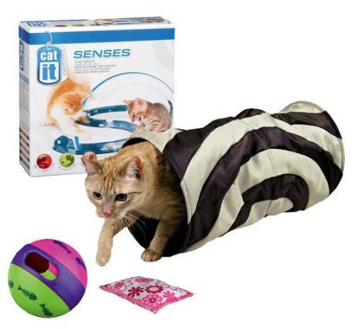 Spielzeug_Kitten Special