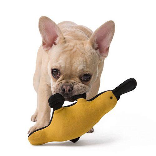 hunter-spielzeugh-aqua-toys-hund-petspremium