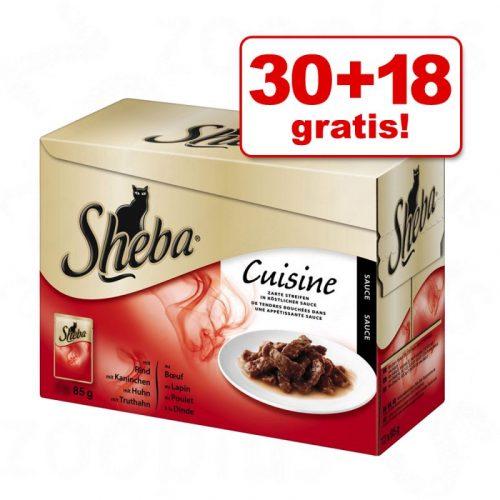 sheba 2