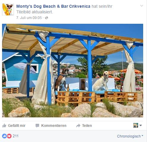 Dog Beach_Kroatien