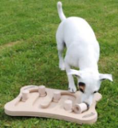 dog-trubble-1421234433