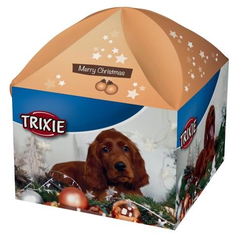 weihnachtsbox-geschenkbox-fuer-hunde-1476784681 (1)