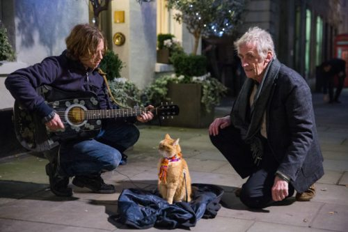 Luke_Treadaway__James___Bob__Roger_Spottiswoode_A_Street_Cat_Named_Bob_Covent_Garden_700