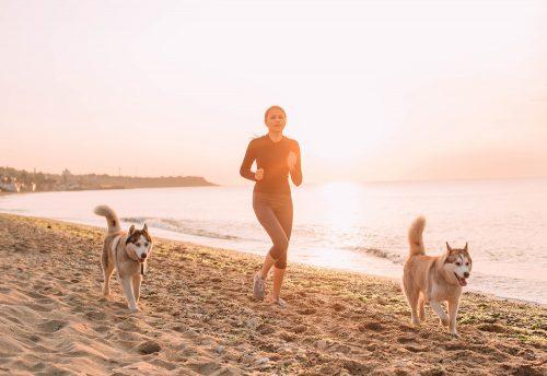 Joggen mit Hund am Strand