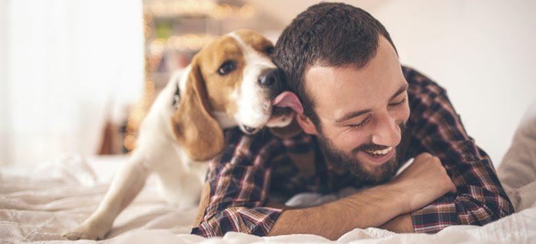 soldat ist im ausland freundin verkauft den geliebten hund. Black Bedroom Furniture Sets. Home Design Ideas