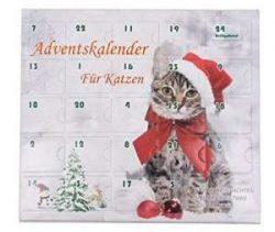 Spielzeug Adventskalender für Katzen