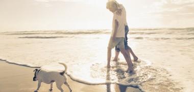Mit Hund am Stand