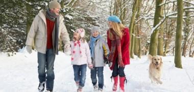 Familie-Wald-Schnee-585x390
