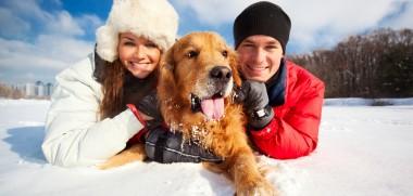 Schneespaß mit Hund