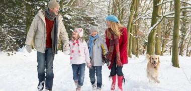 Familie Wald Schnee