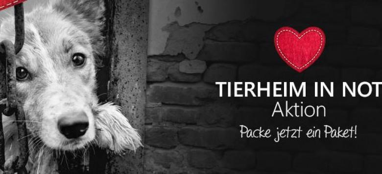 tierheim in not 2015