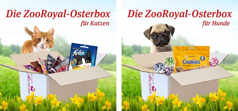 zooroyal boxen