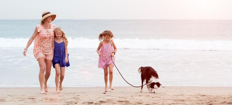 Familie Hund Strand