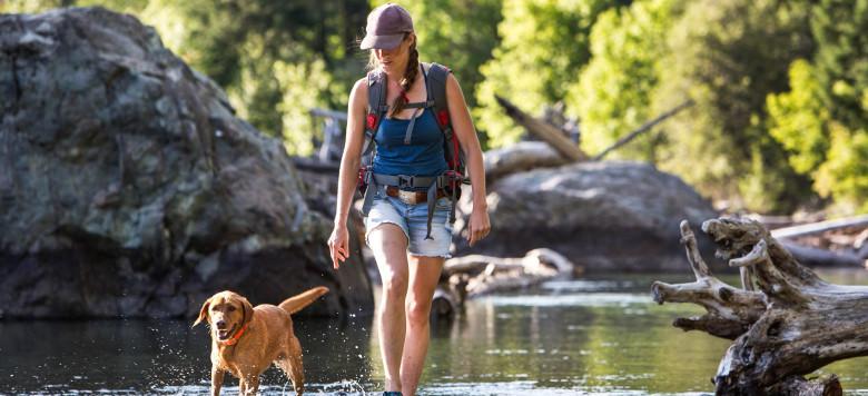 Wanderer und Hund-Die flachen Teil eines Fluss iStock_000064378711_Large-2