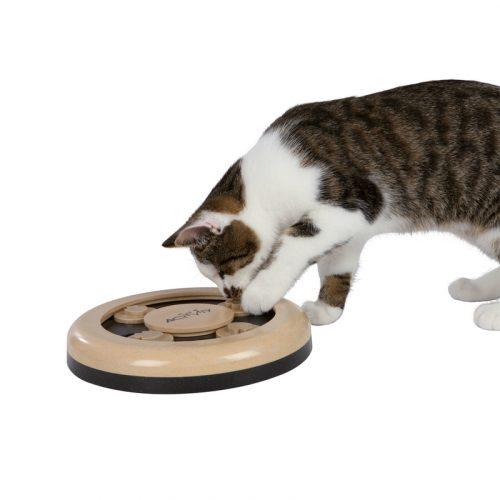 cat-activity-fun-circle-katzenspielzeug-1404479381