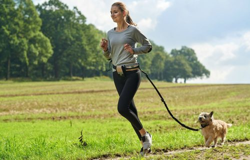 hunter-jogginggurt-tacoma-active-mit-elastischer-leine-1467992198